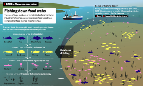 EyeOverFishing.org - Compare fisheries-1.jpg